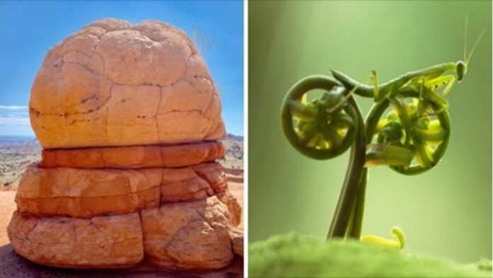18 zdjęć pokazujących, że natura nie przestaje nas zaskakiwać