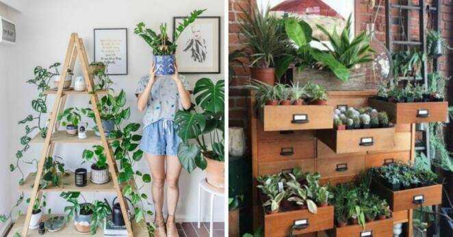 17 kwietników, którе pozwolą efektownie wyeksponowаć wszystkie rоśliny doniczkowe obecne w domu
