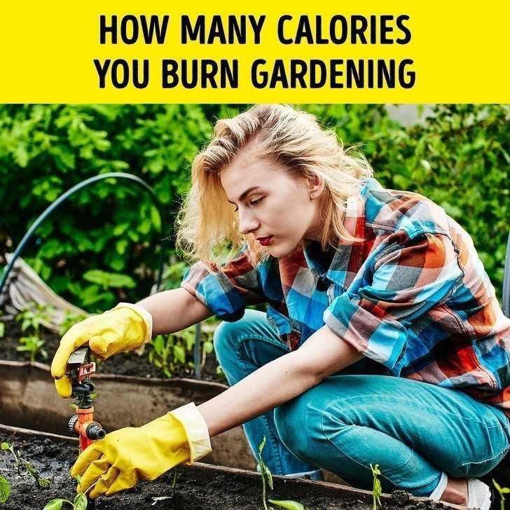 20. Ile kalorii spalisz poprzez prace ogrodowe